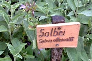 Ricola Schau- und Kräutergarten