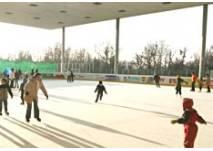 Eislaufen am überdachten Eislaufplatz in Hard am Bodensee