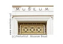 Naturhistorisches Museum Basel