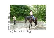 Reithof Heidegg in Niederstocken