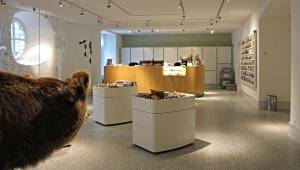 Naturmuseum Thurgau Frauenfeld
