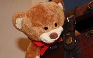 Teddybär Museum in Baden