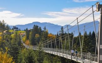 """Hängebrücke """"Raiffeisen Skywalk"""" auf dem Mostelberg"""