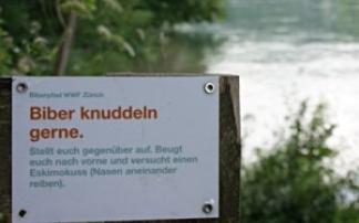 WWF Biberpfad am Rhein