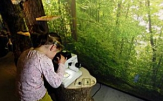 Naturzentrum Sihlwald