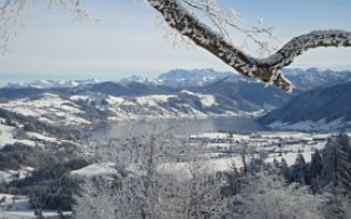 Winterwanderwege bei der Zugerbergbahn
