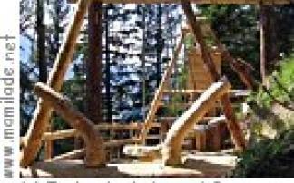 Wald-Lern-Pfad von der TschentenAlp nach Adelboden