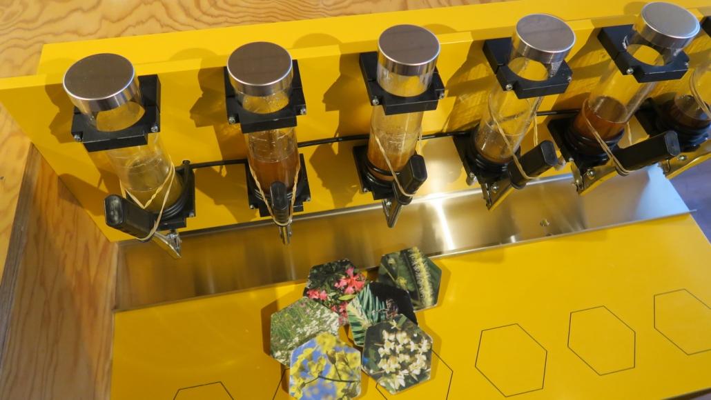 Bienenerlebnis im Museum Burgrain
