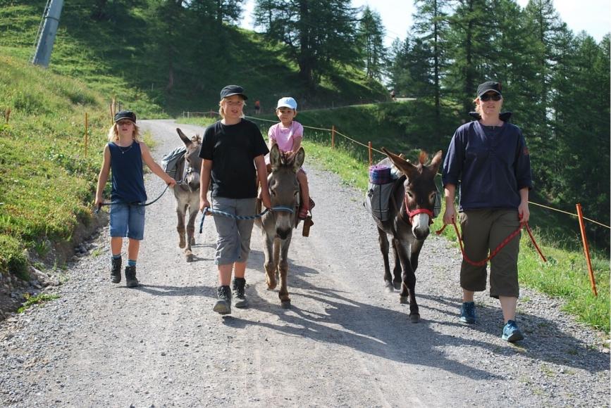 Eselwanderung im Toggenburg