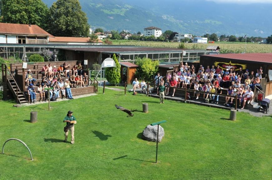 Beeindruckendes Tiererlebnis im Greifvogelpark Buchs