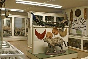 Museum Heiden