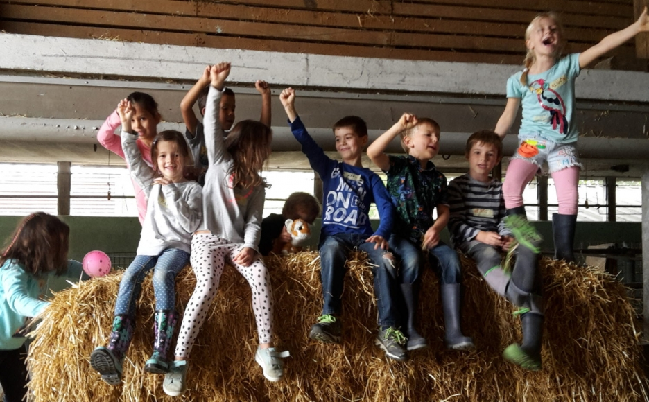 Kindergeburtstag Kidsfarm