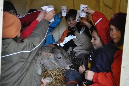 Kindergeburtstag auf dem Bauernhof Berghof in Rohr,