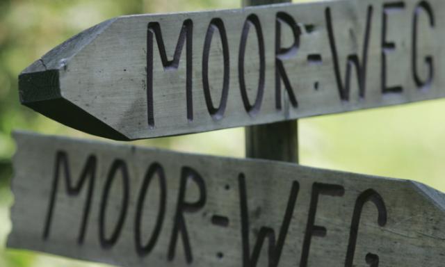 Barfussrundgang übers Hochmoor auf der Wolzenalp