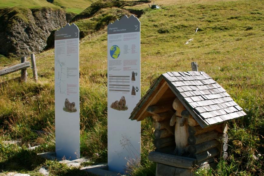 Murmeltier Erlebnis- und Lehrpfad in Cresta