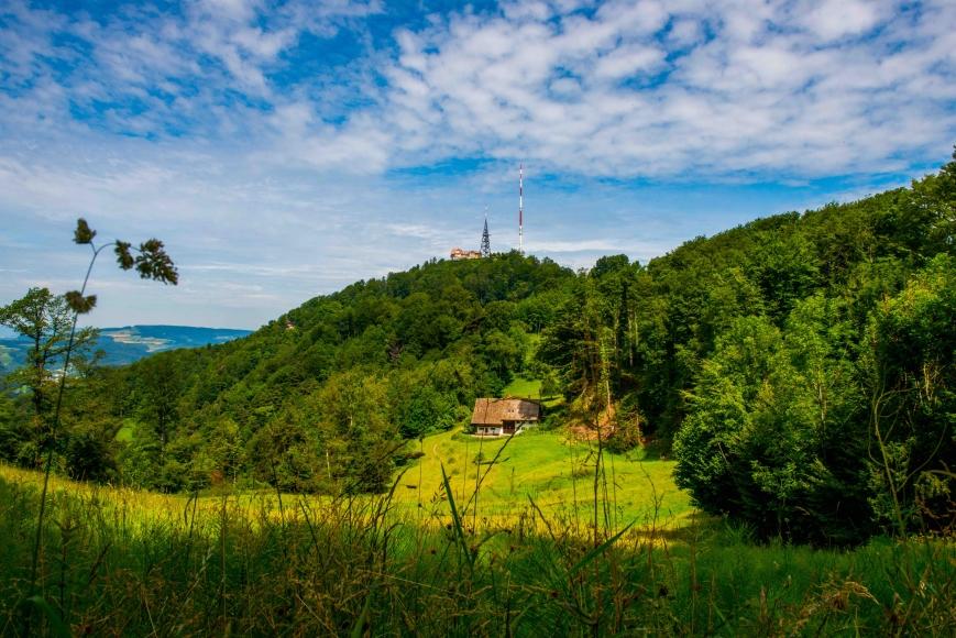 Panoramaweg Uetliberg