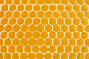 Bienenlehrpfad in Vaduz