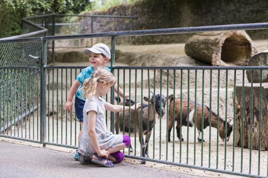 Kindergeburtstag im Zoo Basel