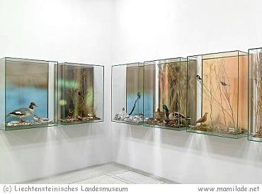 Liechtensteinisches Landesmuseum in Vaduz