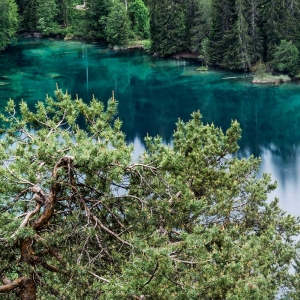 Crestasee zwischen Trin und Flims