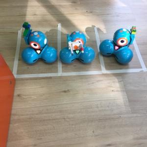 Geburtstagsparty mit Dash