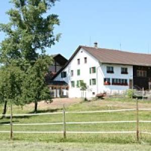 Jucker Farm in Seegräben