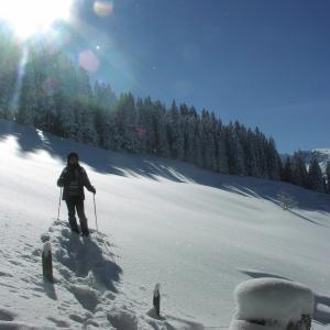 Schneeschuhwanderung auf dem Wirzweli