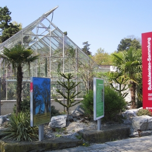 Sukkulenten-Sammlung Zürich