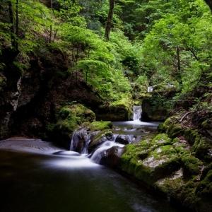 Wanderung durch die Twannbachschlucht